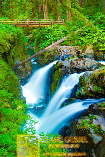 Sol duc falls in Washington State Olympic National Park