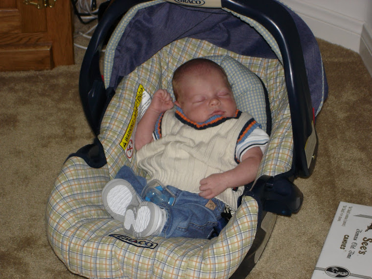 Lance newborn