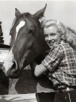 Marilyn Monroe horse