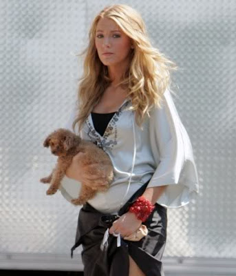 Blake Lively Maltipoo on The Terrier And Lobster  Blake Lively And Penny The Maltipoo