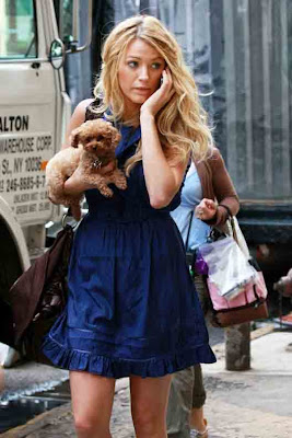 Blake Lively Penny on The Terrier And Lobster  Blake Lively And Penny The Maltipoo