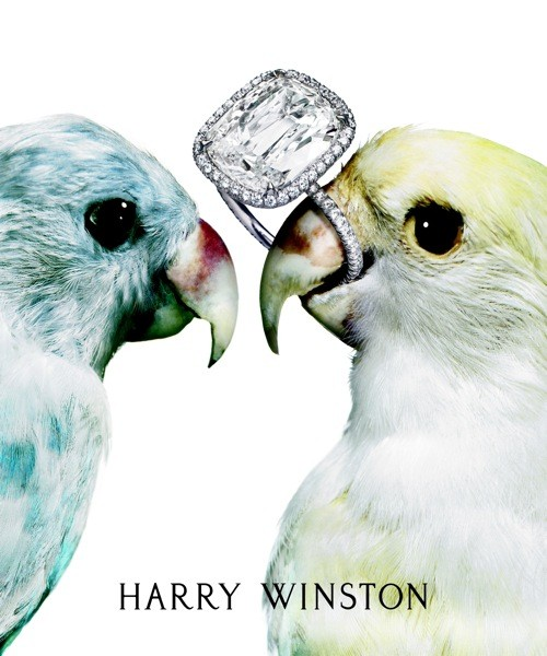 Harry Winston Ring Box