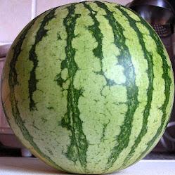 Fresh Seedless Watermelon