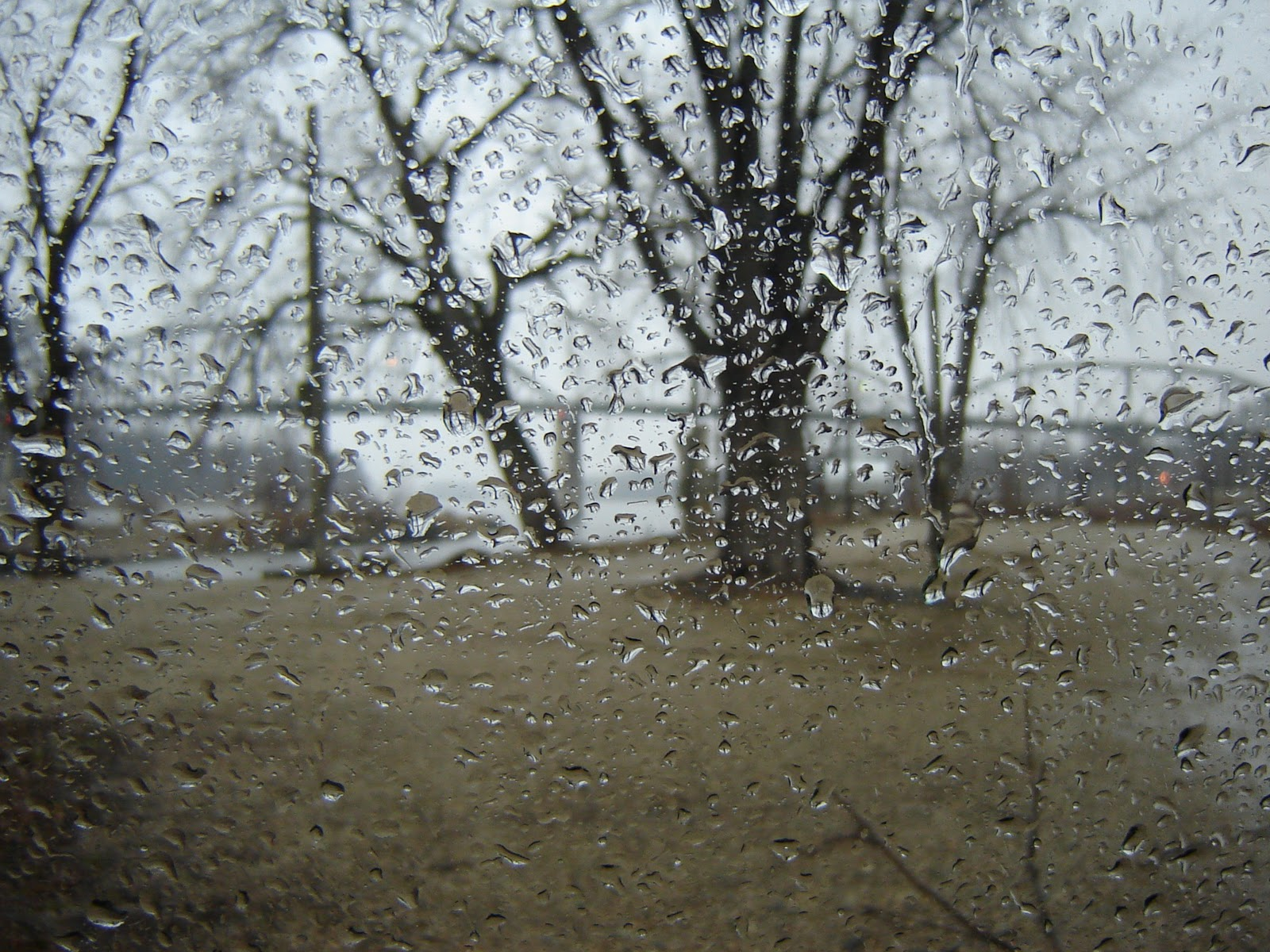 The Circle I Created Called Life: Rainy Day Cold