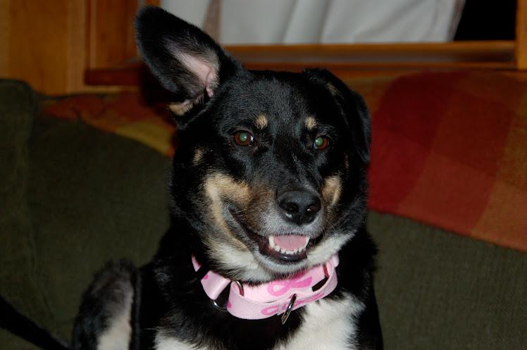 Josie smiling