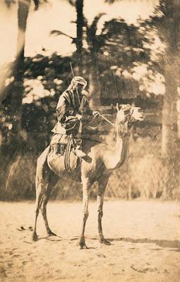 Бедуин на своём верблюде. Фото А. Жарро, 1858-1860 год, Египет. Bédouin sur son chameau. A. Jarrot, 1858-1860 (Egypte). http://expositions.bnf.fr/veo/feuilletoirs/index.htm
