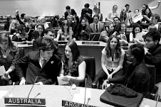Youth Caucus UN  CSD 17