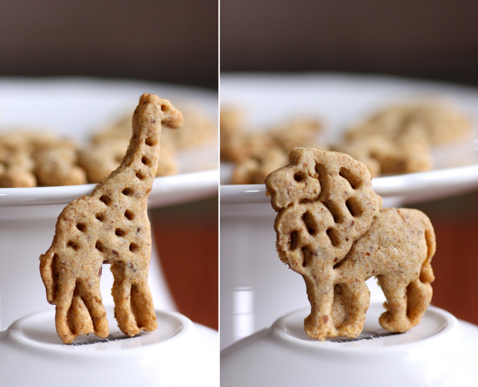 So, lets establish why animal crackers are a kid-friendly recipe: