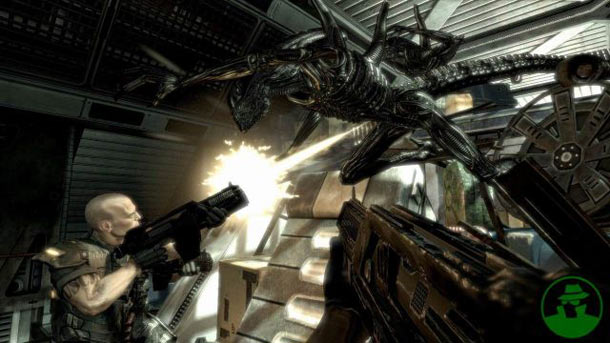 aliens-vs-predator-20090603114446230.jpg
