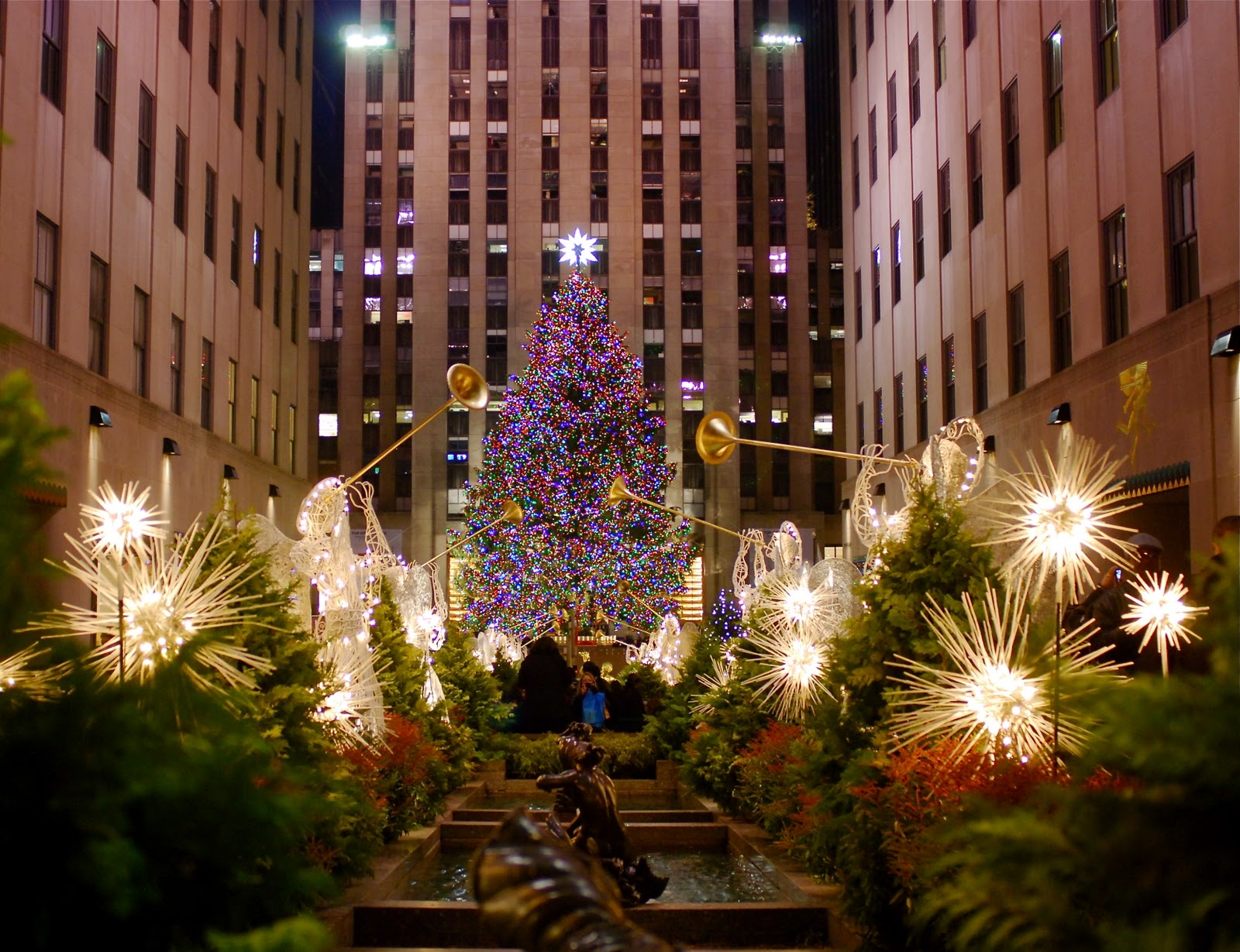 NYC ♥ NYC: Christmas Trees in Manhattan