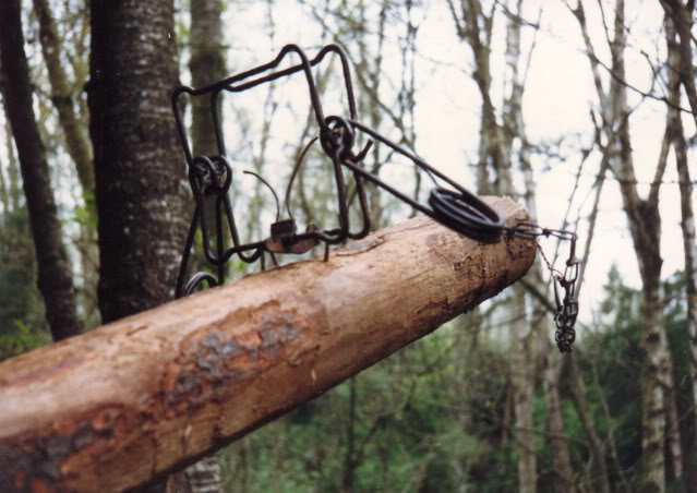 Trapping supplies review marten trapping in canada for Maten trap