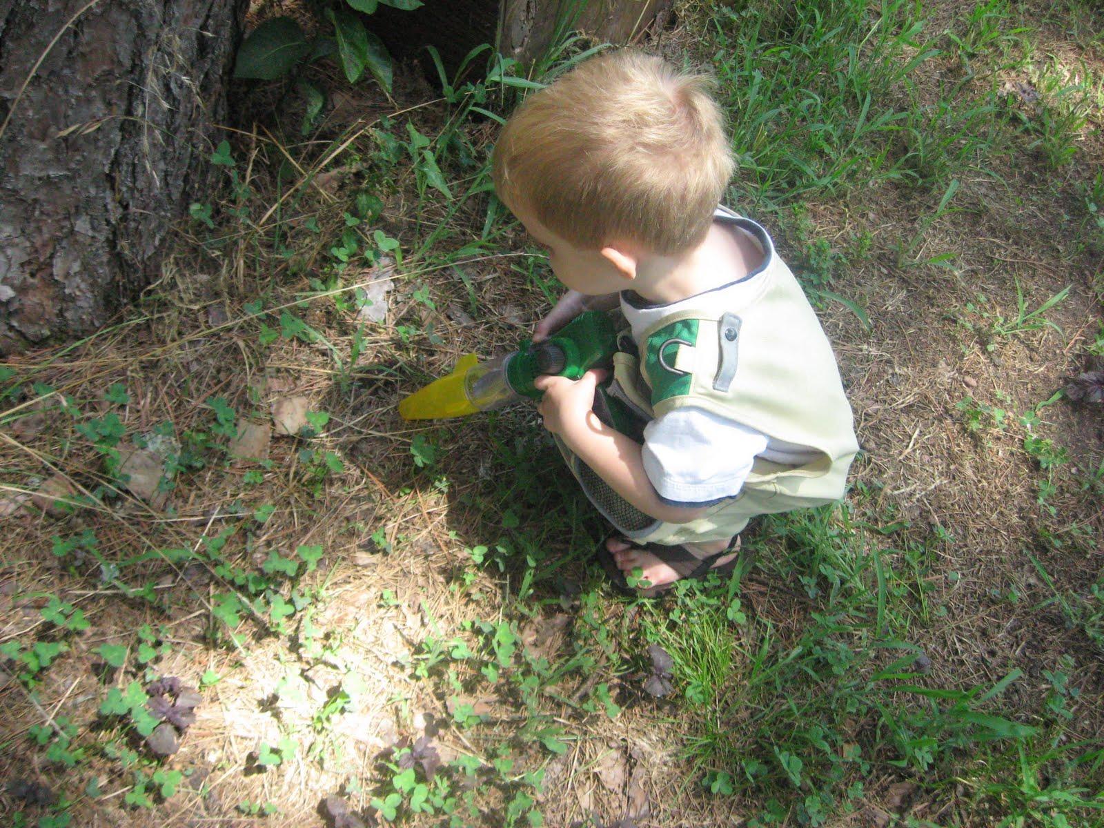 the cartoon lovin u0027 mama summit toys backyard safari review and