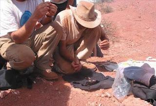 Descubiertos en Argentina los restos de dinosaurios de hace 190 millones de años. epa