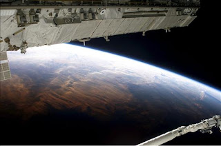 Logran sobrevivir a las condiciones hostiles del espacio