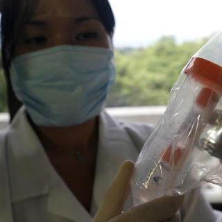 El parecido del H1N1 y la gripe española explican la inmunidad en mayores