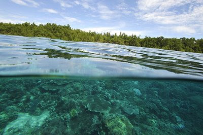 Bukanen Island, Manado, Indonesia. Afp