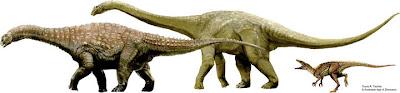Los tres dinosaurios han sido bautizados con los nombres de Matilda, Clancy y Banjo.  AUSTRALIAN AGE OF DINOSAURS