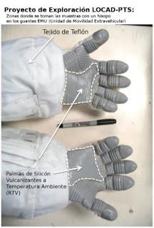 Sitios a examinar con hisopos en los guantes de los astronautas
