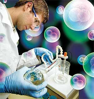 Desarrollan células madre con un mayor potencial regenerador con nanopartículas