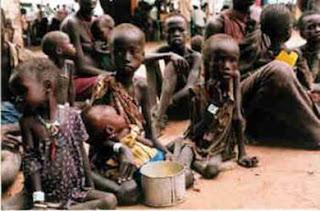 La ONU reclama a los países ricos más inversión en agricultura para combatir el hambre