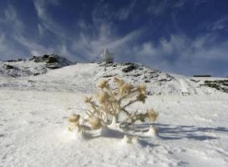 Primera nevada del otoño en la estación de esquí de Sierra Nevada - EFE