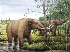 El estiércol y la extinción del mamut