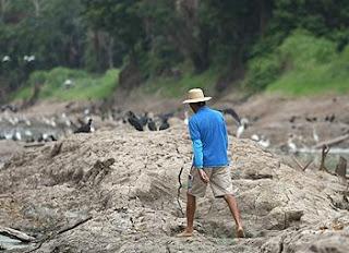 Sequía en la Amazonía brasileña. EFE