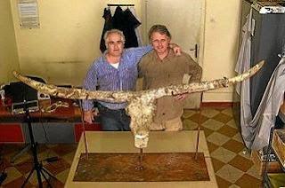Martínez (izquierda) y Landucci, junto a los fósiles del toro. Foto: iphes