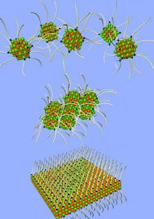 Nanopartículas que se autoensamblan en presencia de moléculas orgánicas. IMDEA