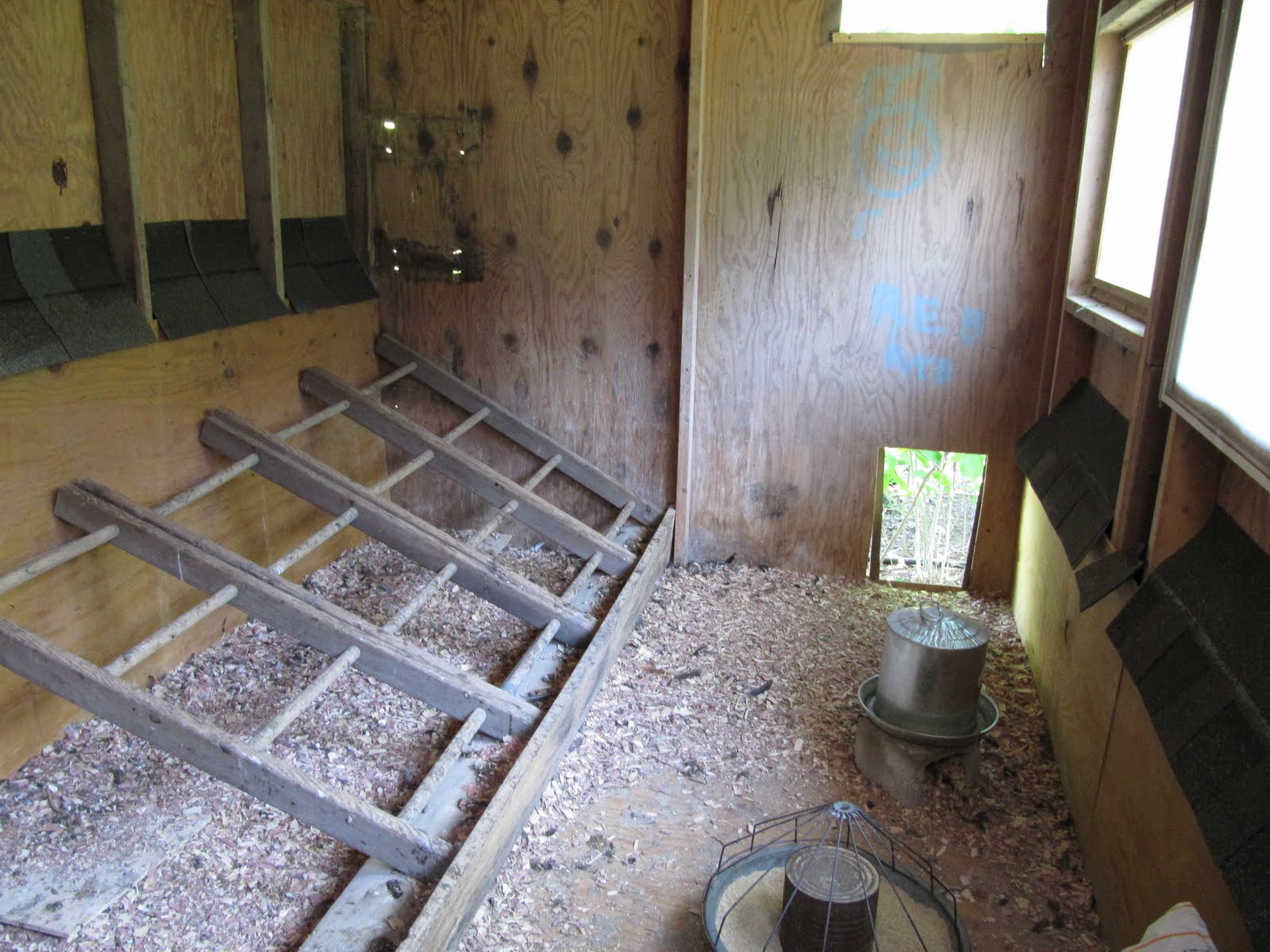 Chicken coop inside layout - photo#27