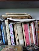 La biblioteca de Jesús Ferrero