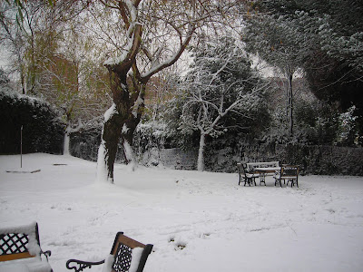 madrid nevada jardin nieve