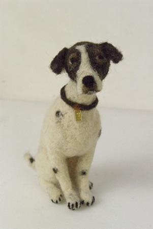 Domenica More Gordon Dogs For Sale