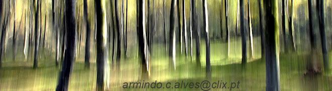 Armindo C. Alves