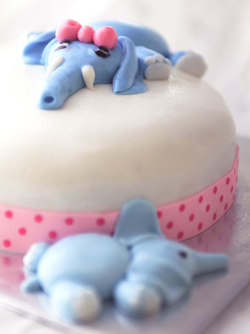 [elephant+cake]
