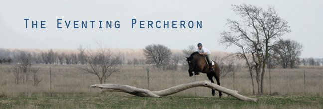 The Eventing Percheron