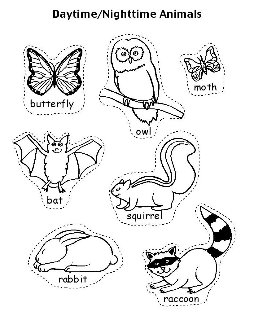 Free Coloring Pages Of Hibernate Animals