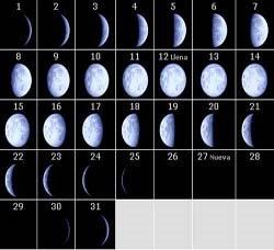 Fase lunar * 2008 *