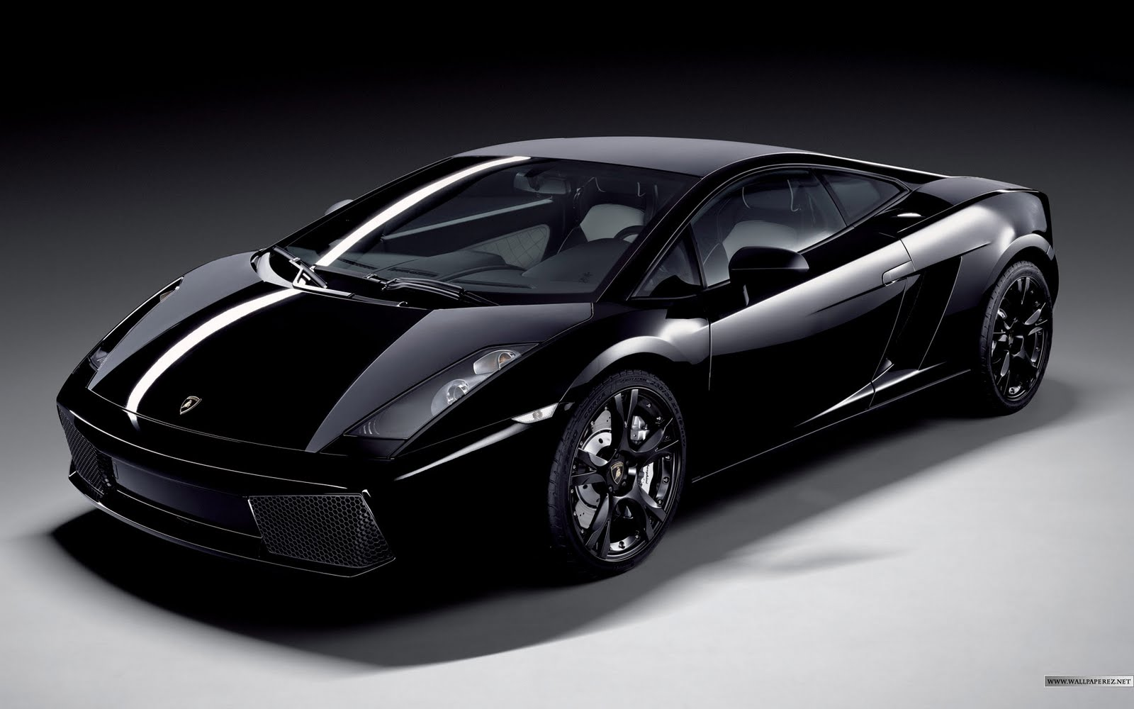 luxury cars lamborghini gallardo. Black Bedroom Furniture Sets. Home Design Ideas