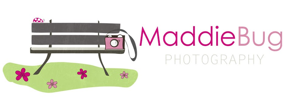MaddieBug Photography
