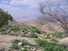 Moses' Mountain- Mt. Nebo, Jordan