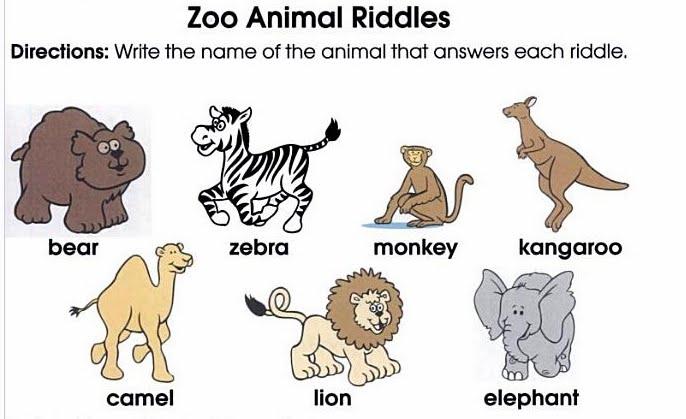 Marisol Miranda - Aprendo ingles: Zoo animal Riddles