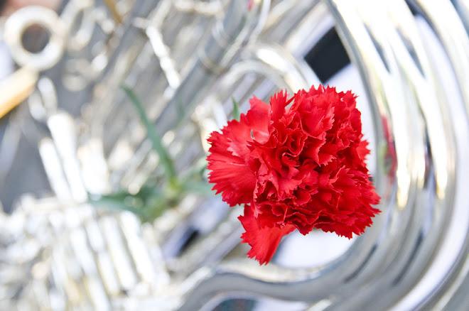 O símbolo da Revolução de Abril - 25 de Abril de 2010, Almada