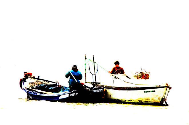 Pescadores e Redes - Baía do Seixal