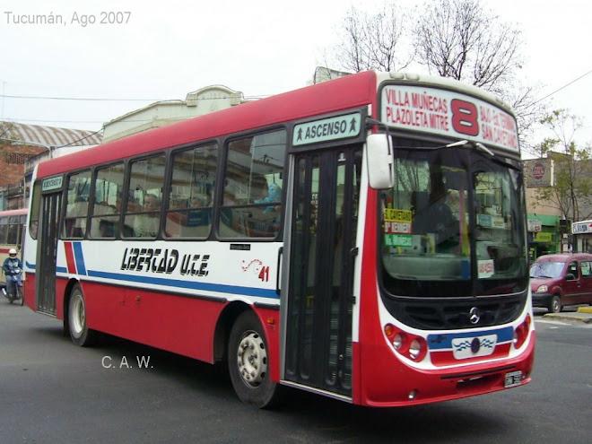 LIBERTAG-LINEA 8