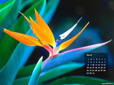 calendar wallpapers. March Calendar wallpapers,