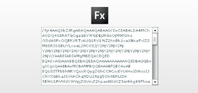 Flex capture image
