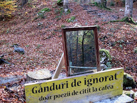 Gânduri de ne - ignorat