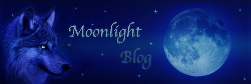 Moonlight Blog