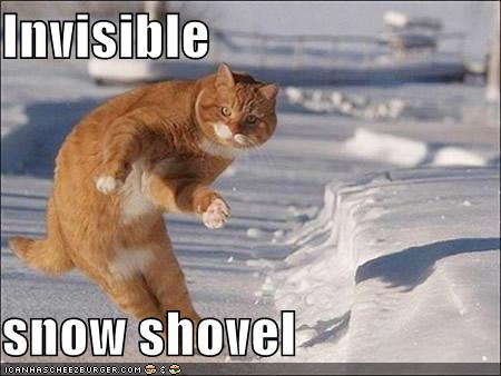 funny quotes about snow. snow day quotes. Quote